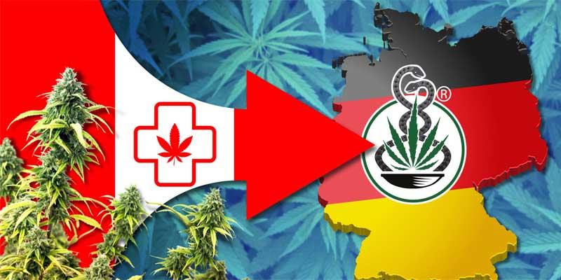 hanf-cannabis-import-kanada-deutschland.jpg