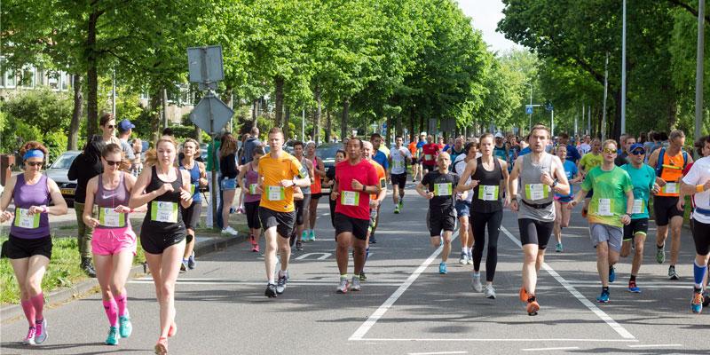 marathon-lauf-alle.jpg