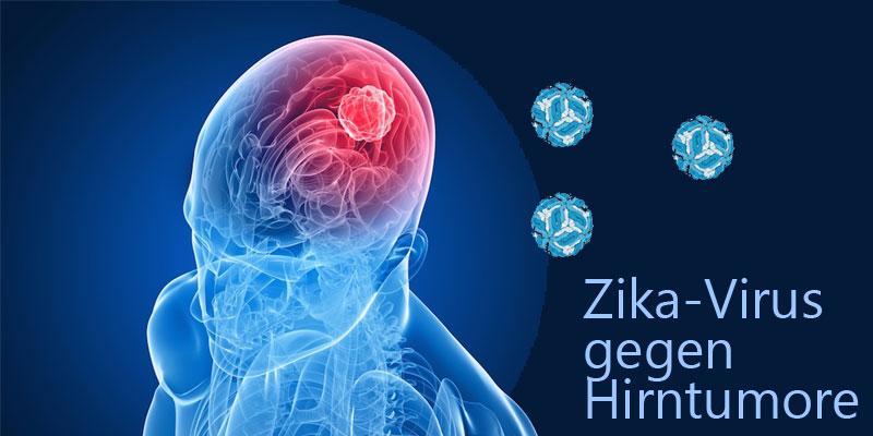 zika-virus-hirntumor-krebs.jpg