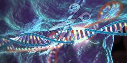 CRISPR-Cas9-Genschere.jpg