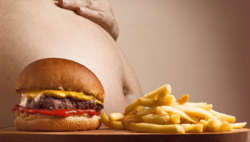 fastfood-dicker-bauch.png